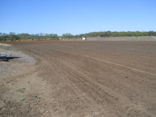 Plowed Field Ready for Wheat Planting