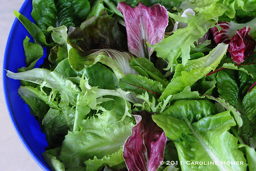Fresh garden salad greens