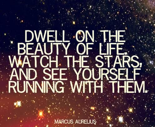 Marcus Aurelius Quotes Dwell On The Beauty Of Life Marcus