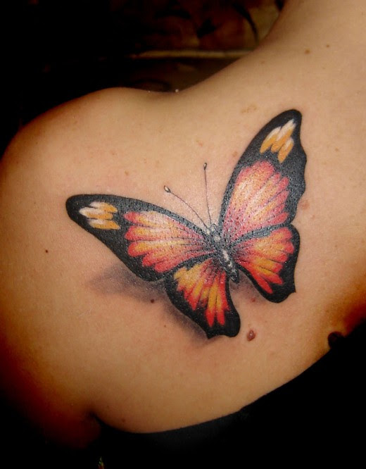 Butterfly Tattoo Design Photo Gallery Butterfly Beautiful Pictures