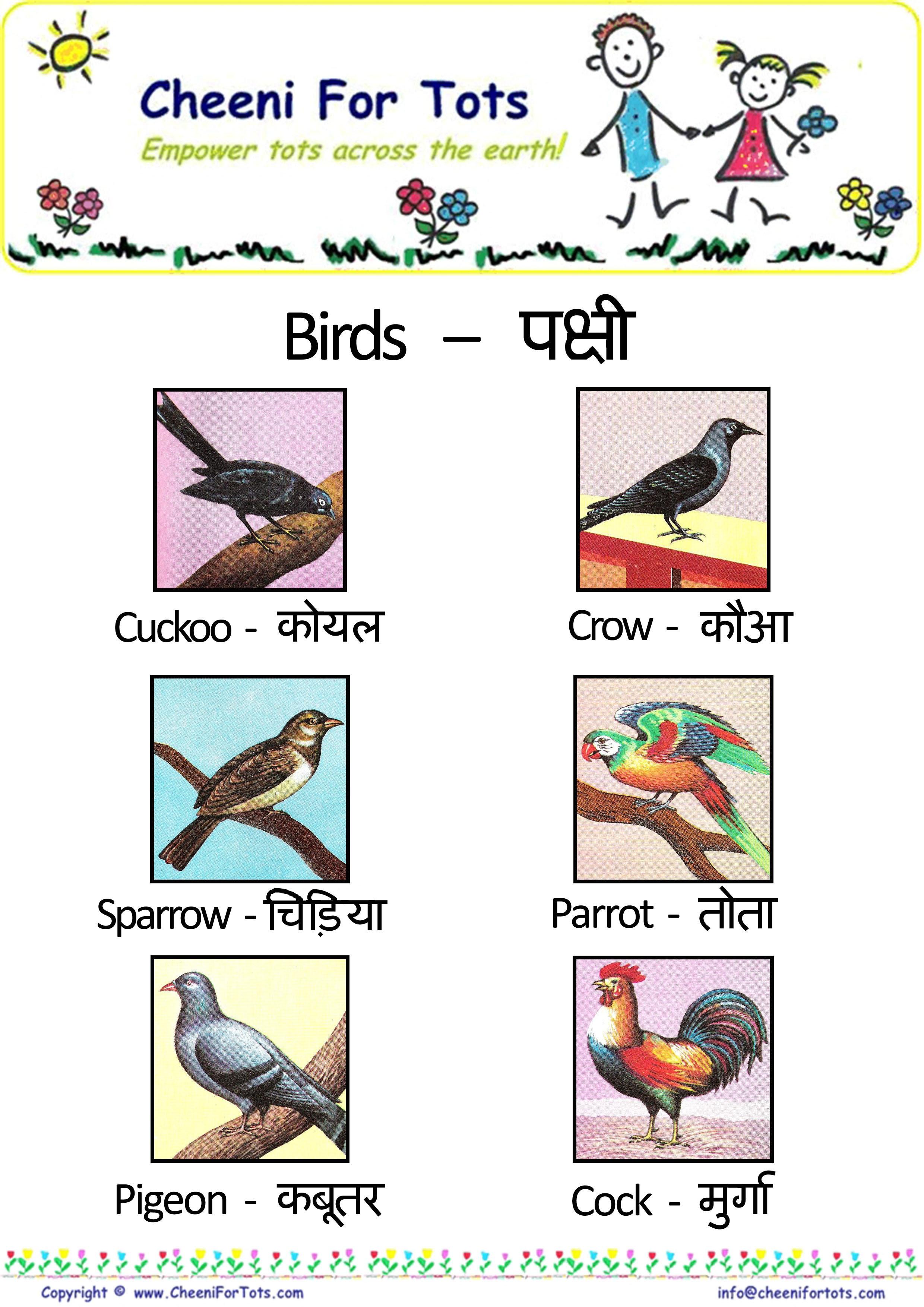 30 TUTORIAL HINDI LANGUAGE ANIMAL NAME WITH VIDEO AND PDF