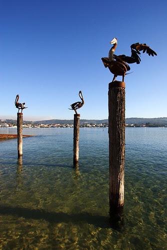 Merimbula Lake, Merimbula, New South Wales, Australia IMG_7850_Merimbula