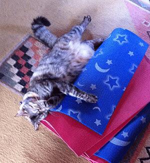 MissSquiggle-yoga