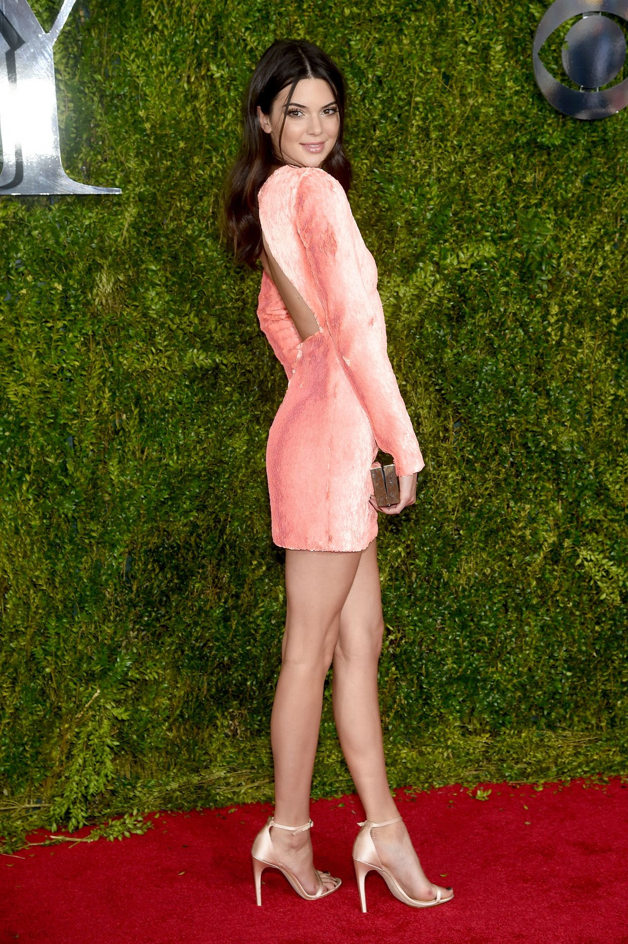 http://fashionsizzle.com/wp-content/uploads/2015/06/kendall-jenner-2015-tony-awards-in-new-york-city_11.jpg