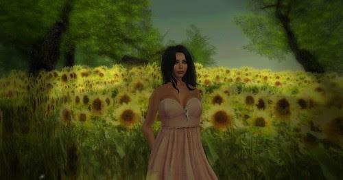 Leroy Sunflowers by Kara Trapdoor