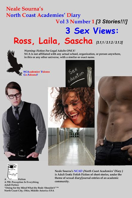 ebook cover NCAD 3.1 Ross, Laila, Sascha