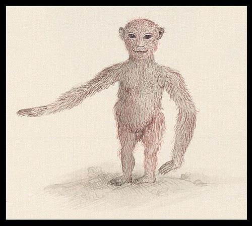 stylised ape (detail)