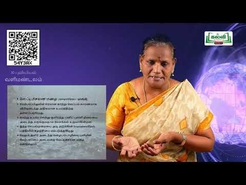 10th Geography வளி மண்டலம்  மழைப்பொழிவு அலகு 8  Part 6 Kalvi TV