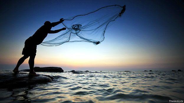 Los océanos ocupan el 70% de la Tierra y contienen el 97% del agua.