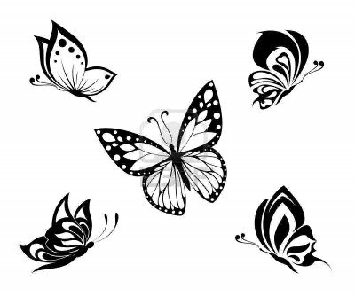 Tatuajes De Mariposa Para Las Muchachas Y Mujeres Simbolismo De Un