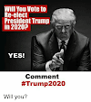 Make The Prediction! Will Trump be reelected President in 2020?? Sign The Petition