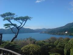 trees, lake, fuji
