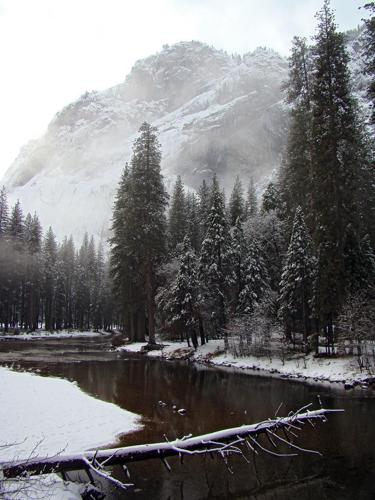 DSC04090 Yosemite Merced River