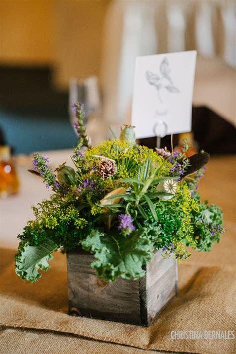 Best 25  Herb wedding centerpieces ideas on Pinterest