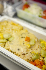 Airline Meal, Delta Airline