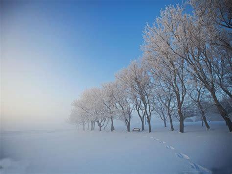 beautiful winter wonderland wallpaper wallpapersafari