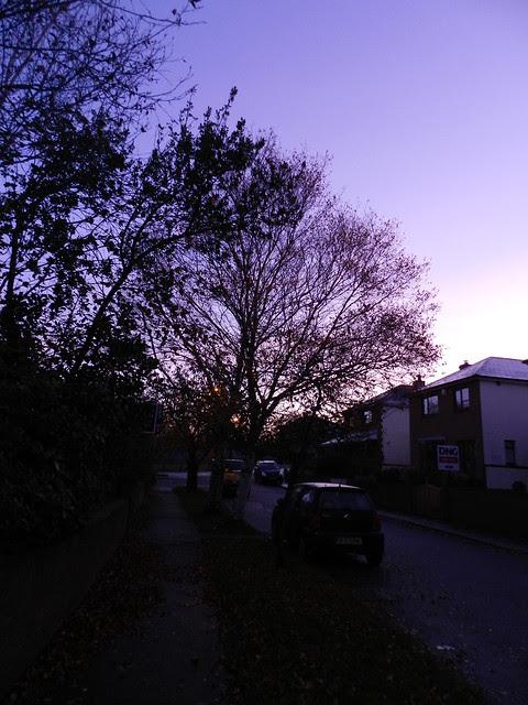 Morning walk to The Savage Eye