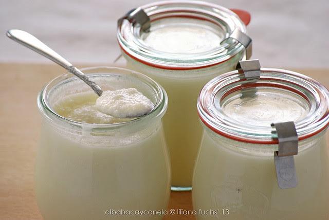 Goat milk yogur