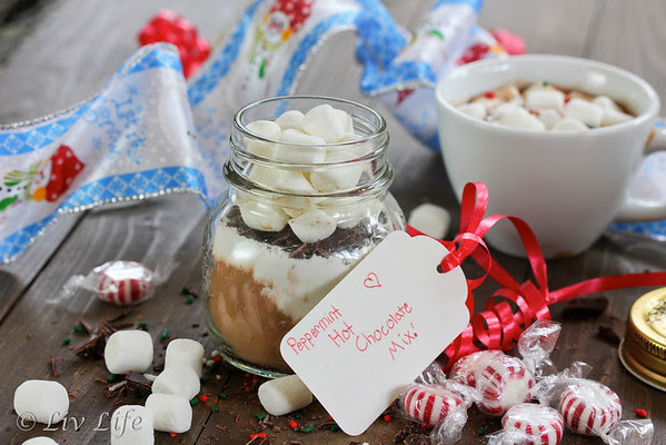 DIY Peppermint Hot Chocolate Mix