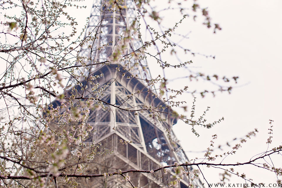 Katie-Leask-Photography-012-Blossom-Spring-Paris-Eiffel-Tower--S
