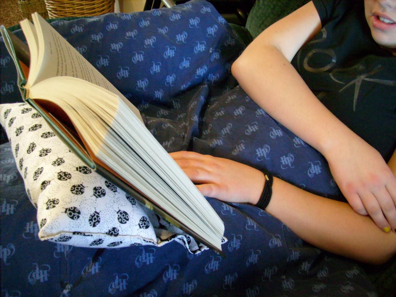 Dizzy Ladybugs reading pillow (m)