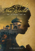 http://www.barnesandnoble.com/w/a-whole-new-world-liz-braswell/1121014127?ean=9781484707296