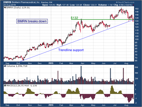1-year chart of BioMarin (NASDAQ: BMRN)