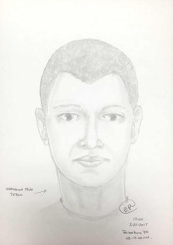 Este es el identikit del principal sospechoso del robo e intento de violación.