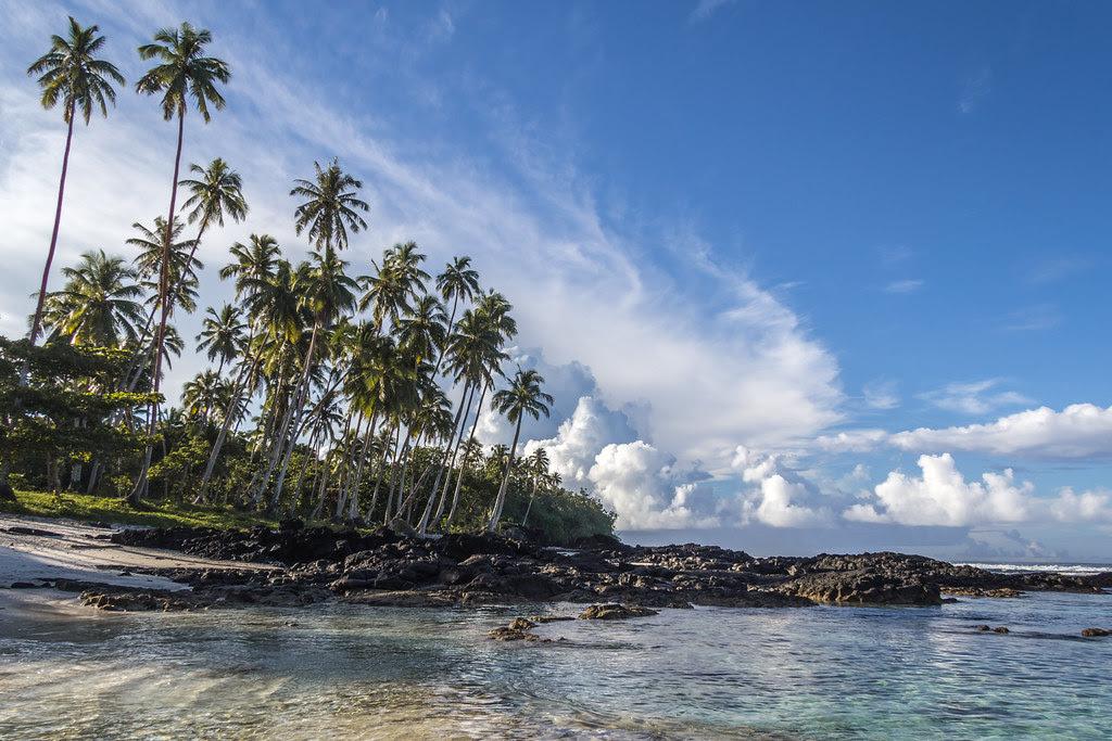 Return to Paradise Beach II