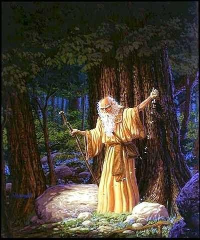 Risultati immagini per druidi