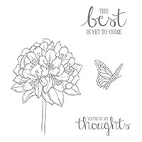 Best Thoughts Wood-Mount Stamp Set