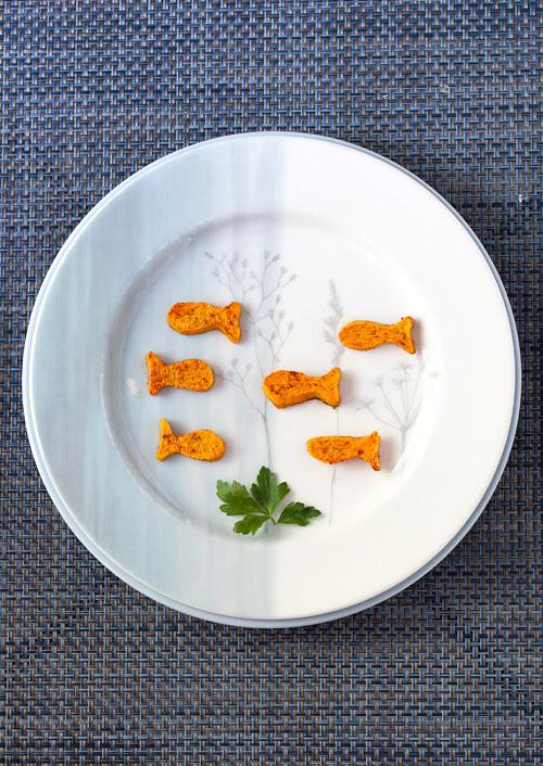 Pumpkin Gold Fish 1