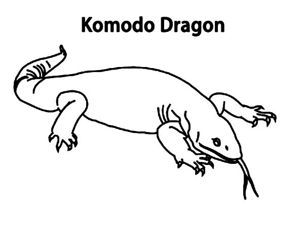 Amazing Coloring Page Dragon 61 Coloring Page Of A Komodo Dragon