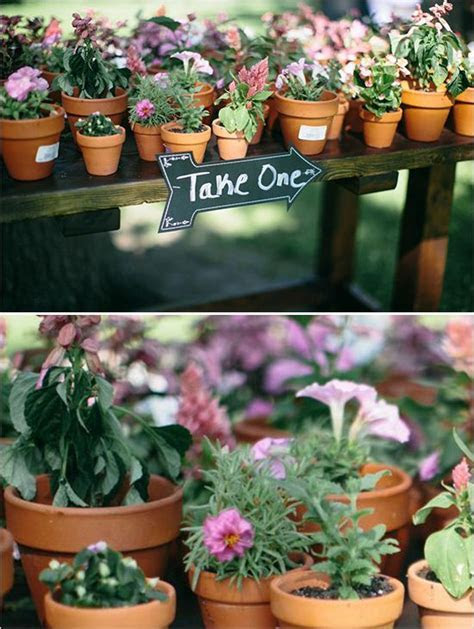 Wedding favor ideas: Tiny pots with with flowers in them