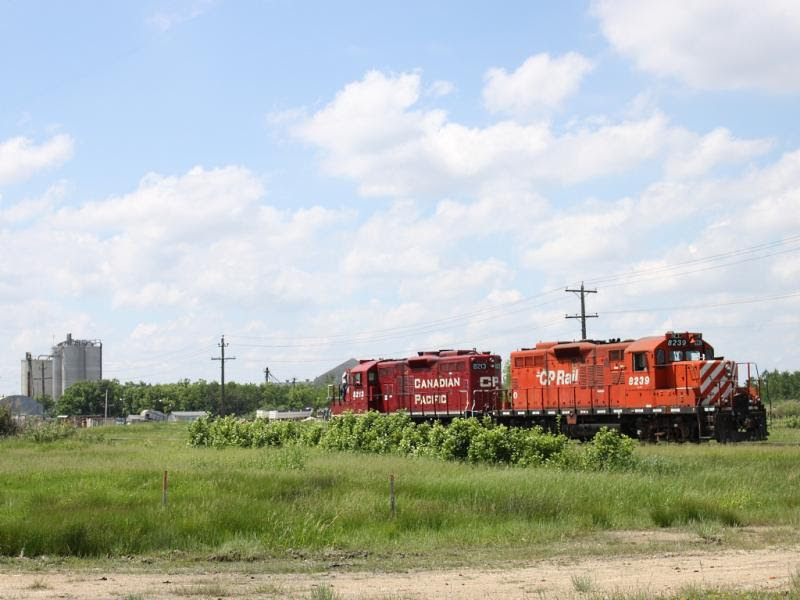 CP 8239 and 8213