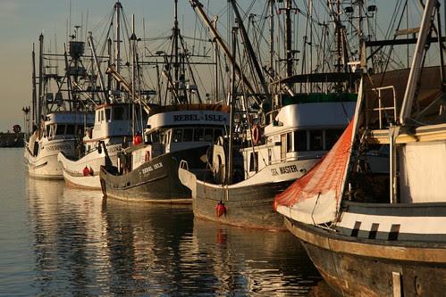 Steveston Fishing Boats
