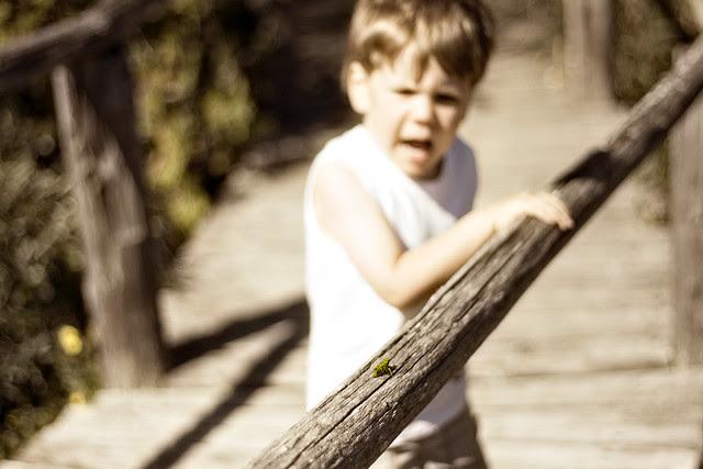 oliver scared of grasshoppa