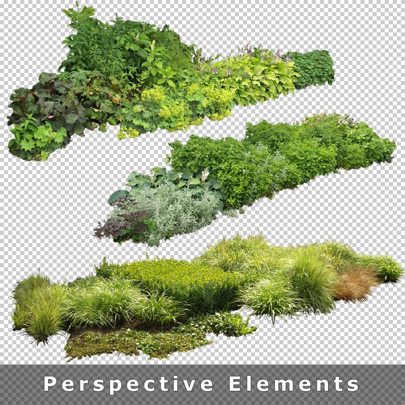 7_Garden Images Entourage Architecture