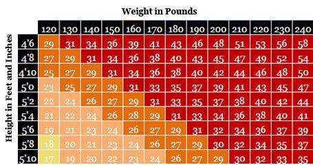 body fat percentage calculator no measurements
