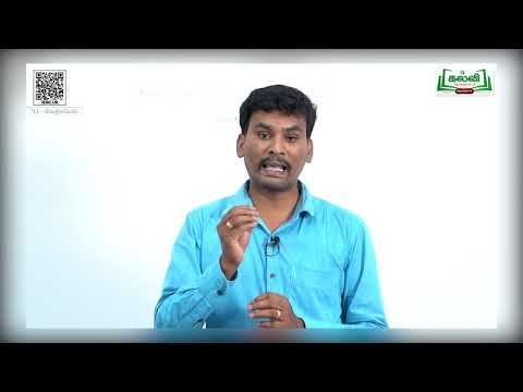 11th Chemistry அணுவின் குவாண்டம் இயக்கவியல் மாதிரி பாடம் 2 பகுதி 1 Kalvi TV