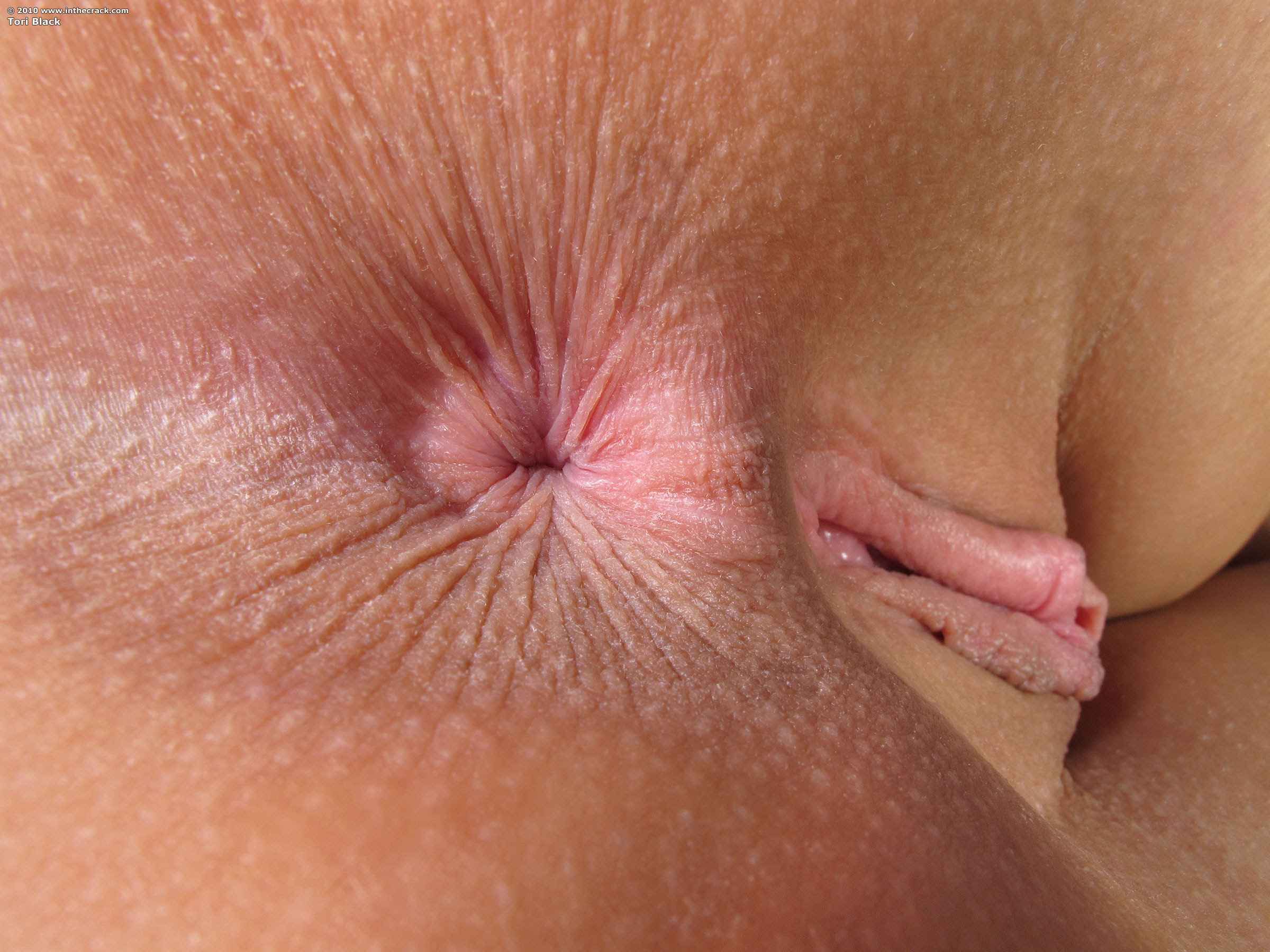 Cumshot Extreme Close Up