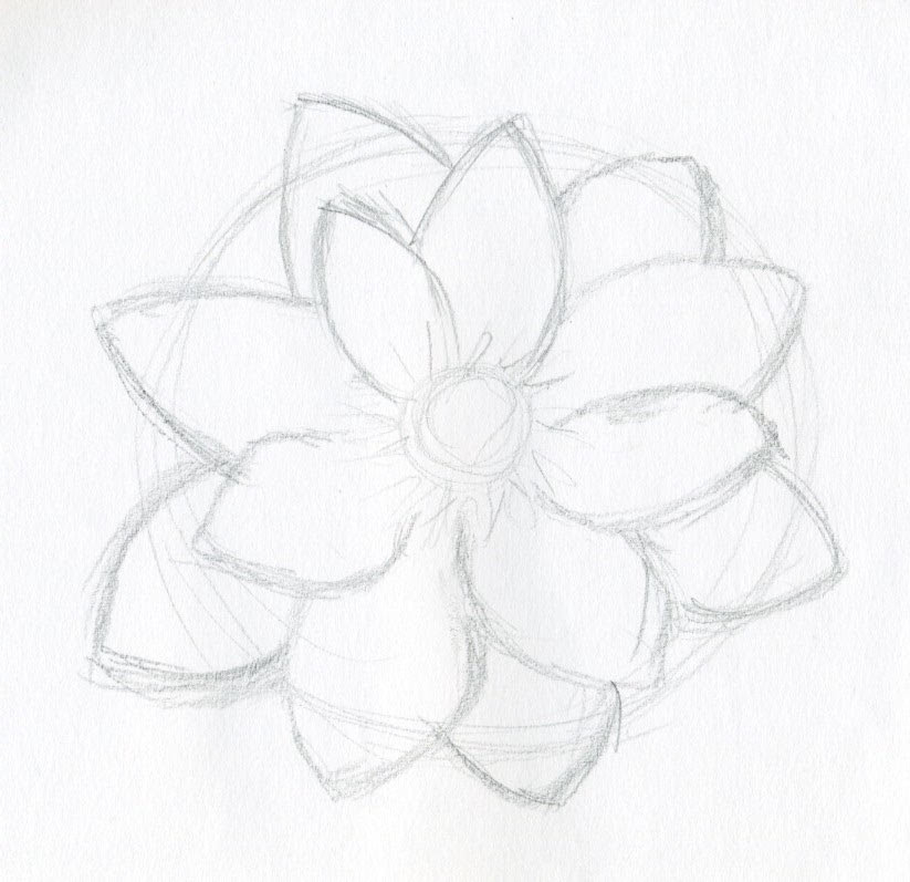 Free Simple Flower Sketch Download Free Clip Art Free Clip Art On Clipart Library