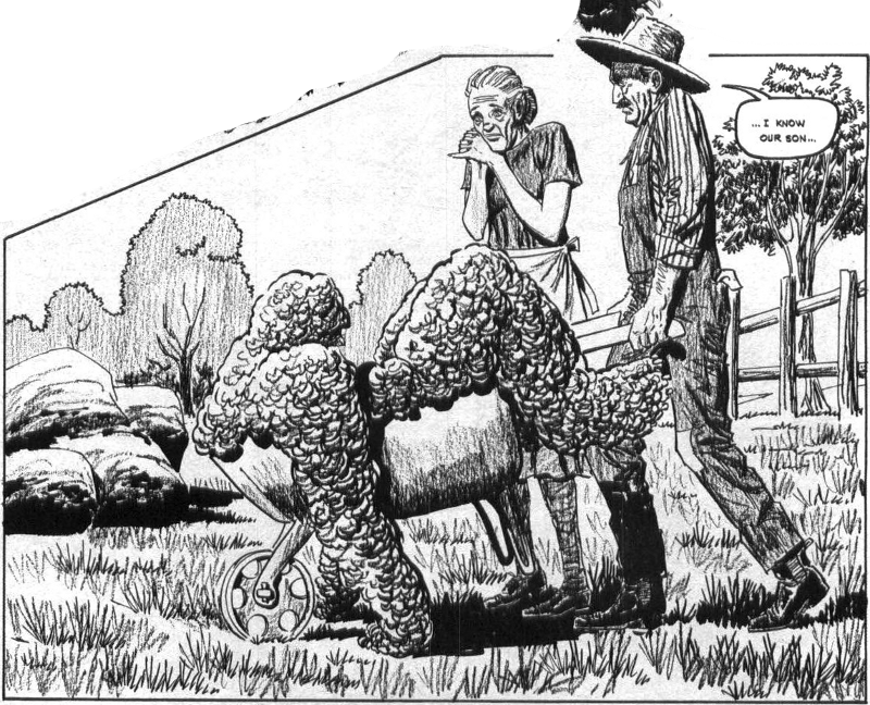Skywald's Heap, illustrated by Roo Andru