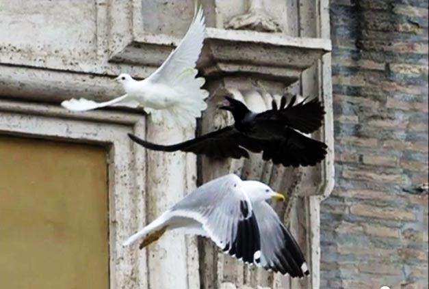 colombe del Papa