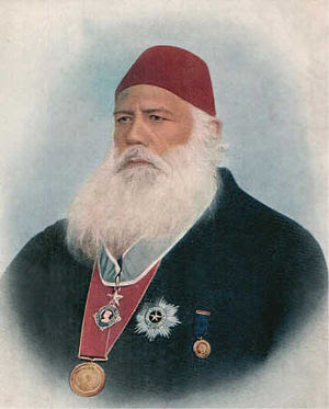 English: Syed Ahmed Khan, an Indian educationa...