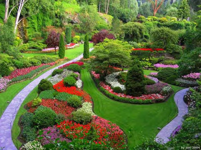Stunning Landscape Garden Design 800 x 600 · 102 kB · jpeg