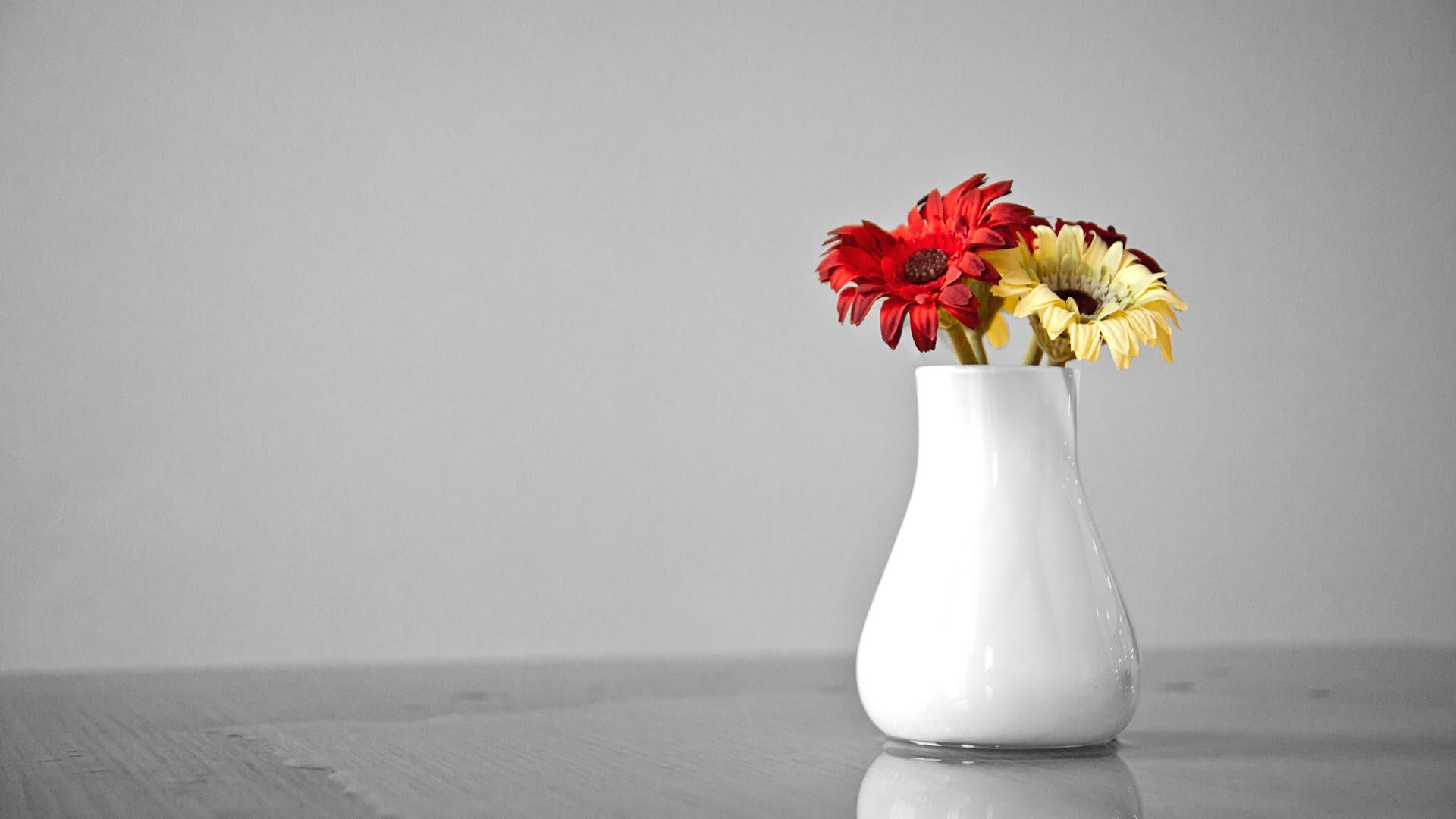 Flower Pot Wallpaper 1920x1080 22915