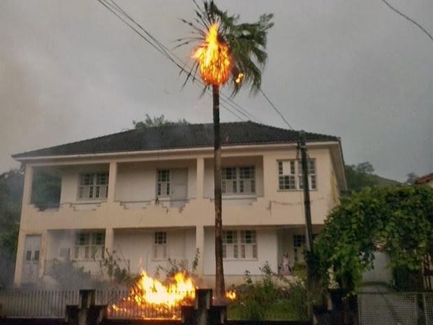 Árvore pega fogo após ser atingida por um raio em Bananal, SP (Foto: Tiquinho/ Arquivo Pessoal)