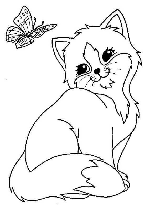Cat With Butterfly Coloring Page - Free Printable Coloring ...