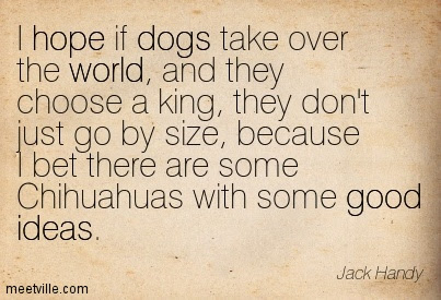 I Hope If Dogs Take Over The World And They Choose A King They Don